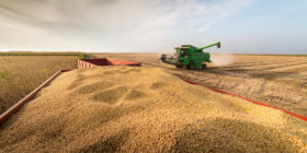 Late Session Rally Lifts Soybean Oil Futures