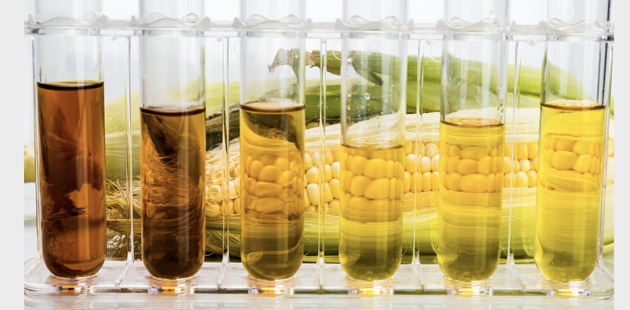 Distiller's Corn Oil (DCO) Sees Second Straight Week of Higher Production