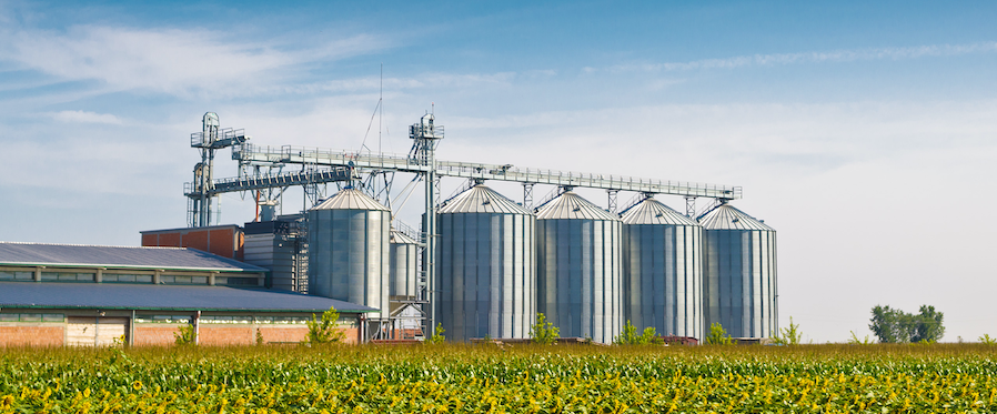Grain Prices Reach Multi-Year Highs