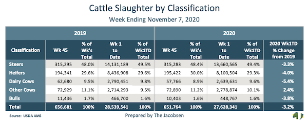 cattle slaughter by classification data